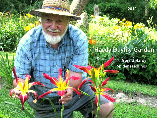 Gerald Hardy at Hardy Daylily Garden Showing Red Spider Daylily Seedlings in 2012